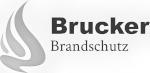 brucker_grau